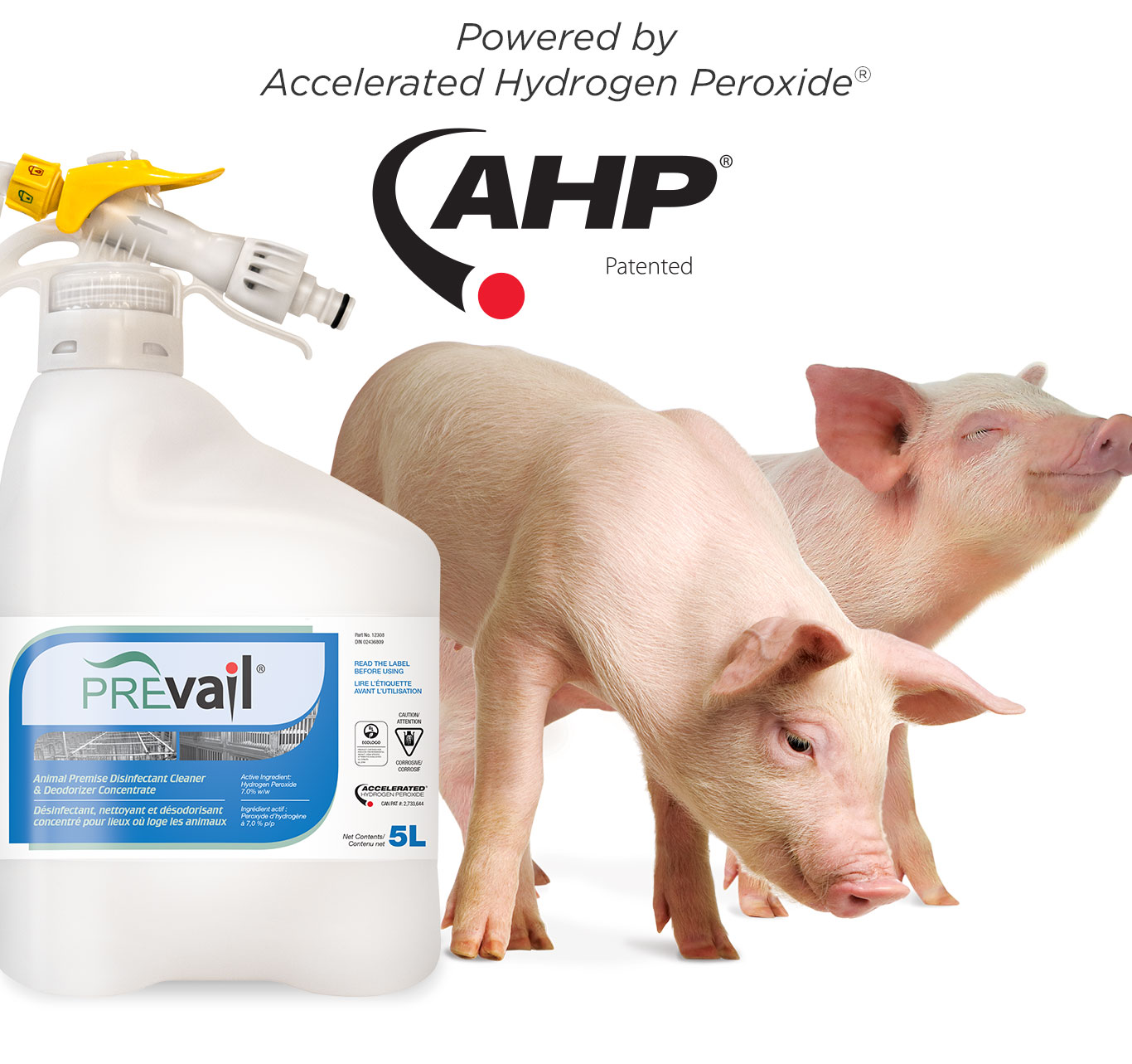 Mobile-Header-Farm-PrevailConcentrate.jpg