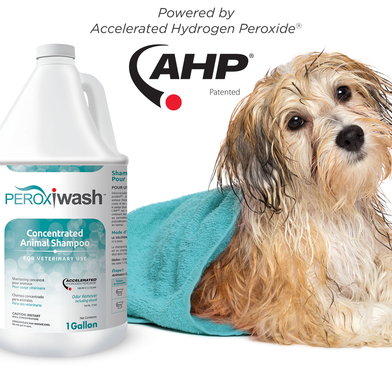 Mobile-Header-Comp-PeroxiWash.jpg